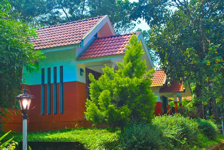 Breeze Villa - Vythiri - Penzion (B&B)