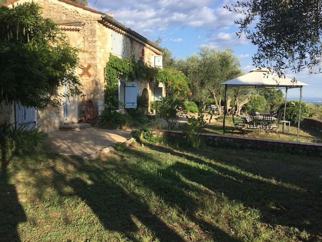 Lovely XVII  sheepfold on a  olive grove...