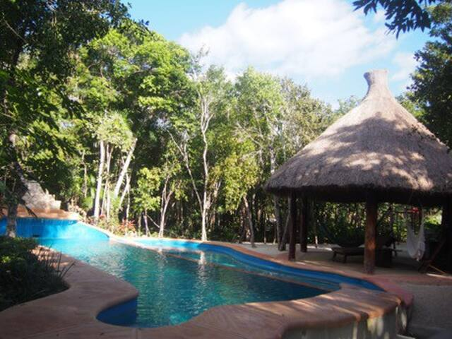 Beautiful Villa in the middle of the Jungle - Chemuyil