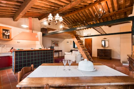 Magico Loft sui tetti lucchesi - Lucca - Loft