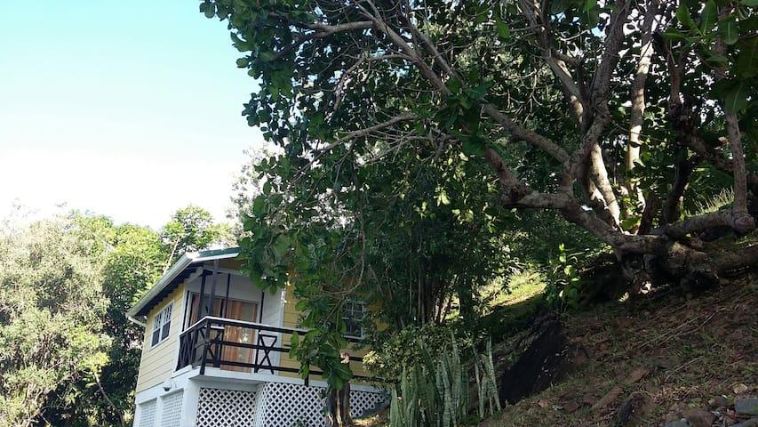 Pineapple House Entrance