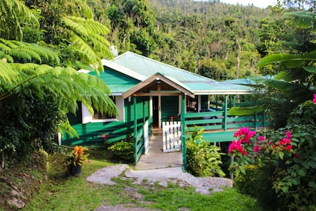 Birdwatchers Rainforest Staycation Cottage