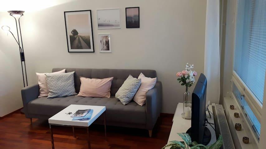 Cozy riverside apartment (Sauna + free parking)
