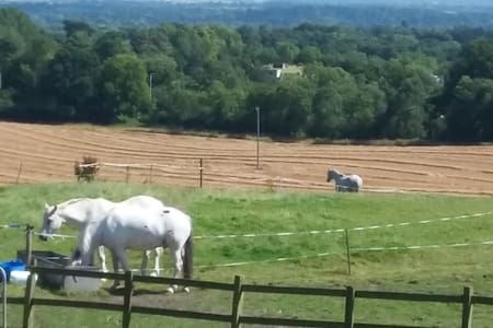 Home Farm - Large bedroom, double & single bed - Hatton