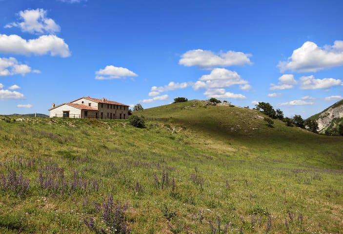 Casale di Ca' Rossara - Splendida Ala Brancaleoni