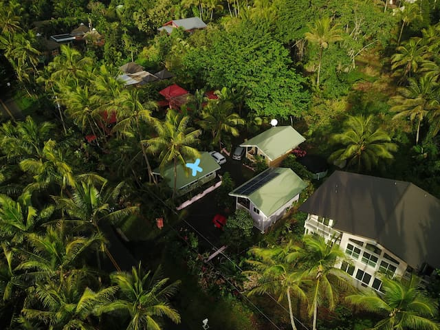 Whale House @ Kehena Beach  - Pāhoa - Dům