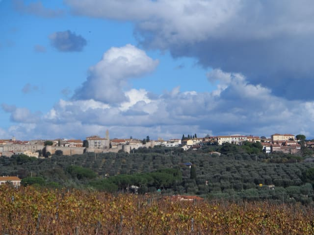 Tuscany between horses, green hills and sea G