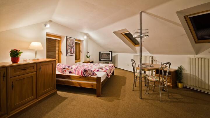 V Podzámčí, apartmá s výhledem na řeku, Wifi FREE.