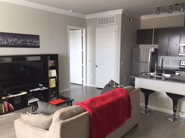 BRAND NEW BEAUTIFUL APARTMENT IN NORTH AUSTIN!