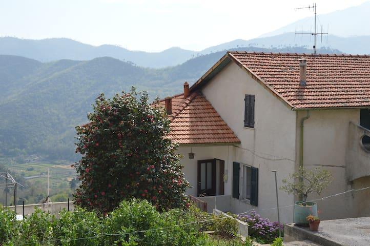 Cà da Nitta. Antica casa immersa nel verde - Tovo San Giacomo - House