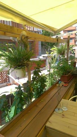 Peter's cafe& hostel-(10 person) - TW - Lejlighed