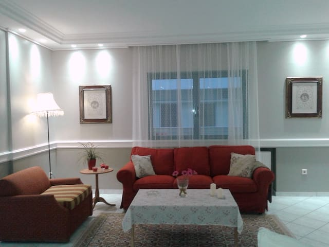 Sunny 3 BR apartment 2min walk from underground - Athina - Wohnung