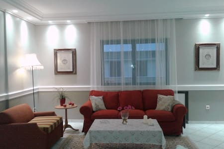 bright and spacious  apartment close to the centre - Athina - Apartemen