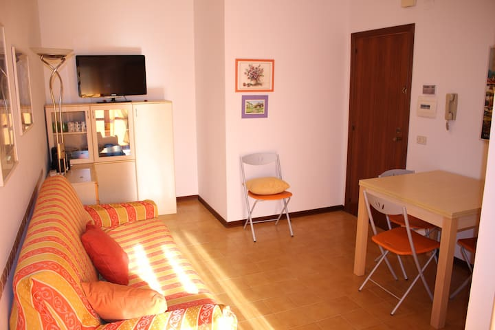 by the sea - a 50 mt dal mare - Villa Rosa - Appartement