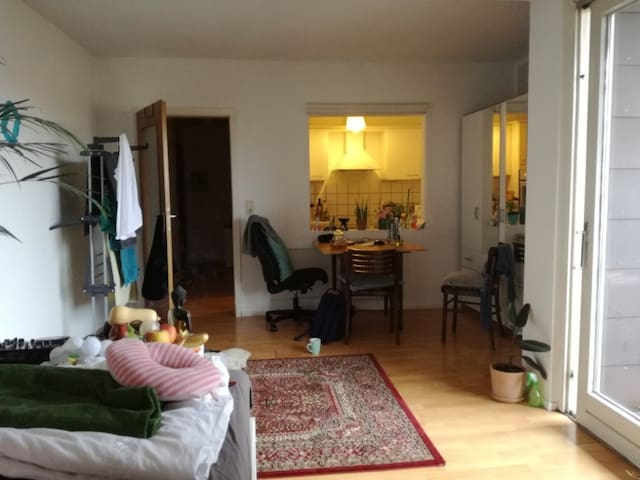 25 sm flat, Goettingen City Center