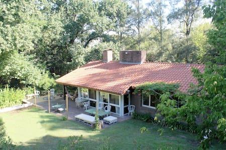 Peaceful big garden house getaway!! - Ricardo Rojas - 獨棟