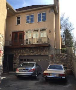 Euro style Townhouse in Kerrytown - 安阿伯 - 連棟房屋