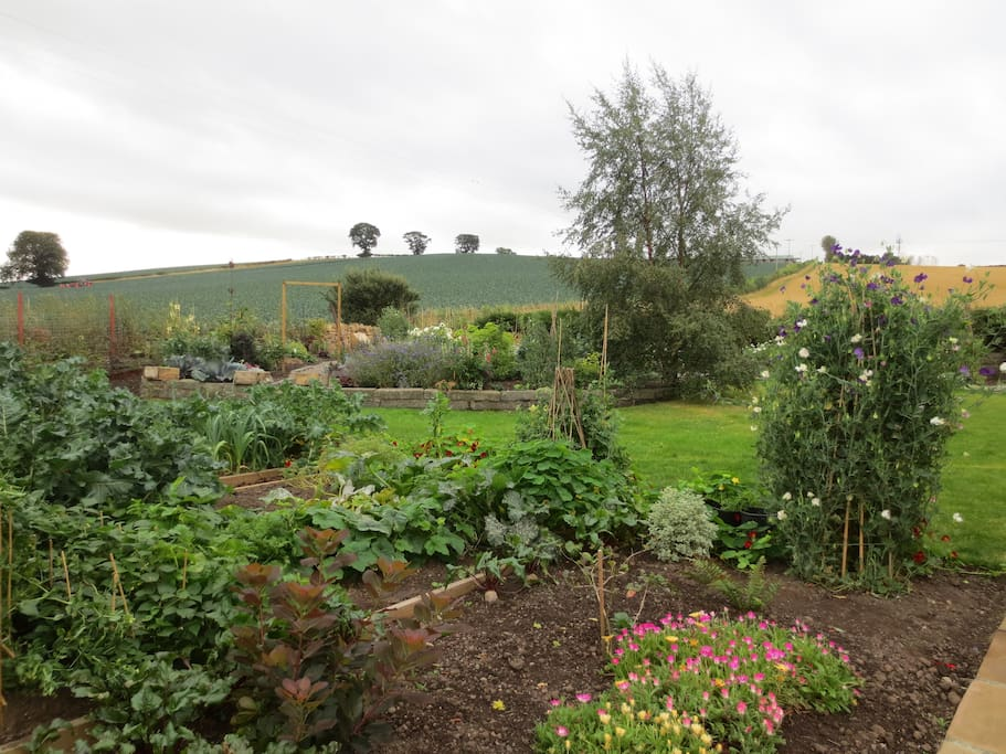 Garden with great views