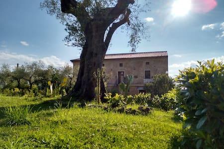 Affittacamere a Vallo della Lucania e nel Cilento - Vallo della Lucania