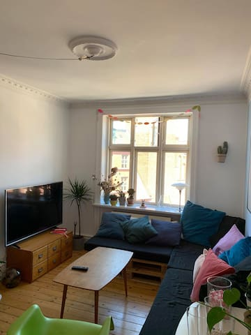 Bright apartment, 200m from central station