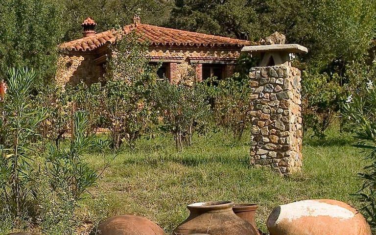 Casa Buho - Molino río Alájar - Alájar