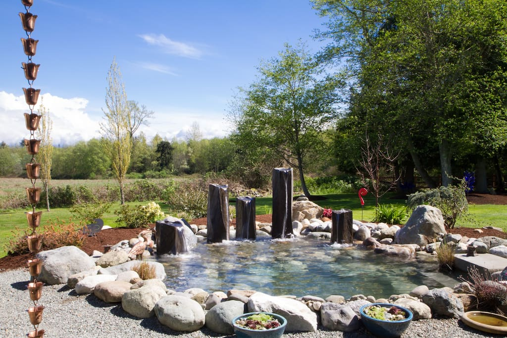 Water feature and adjacent grazing field from patio.