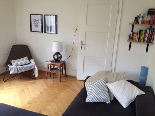 Altbauwohnung mit Charme in Zürich - Zürich - Appartement