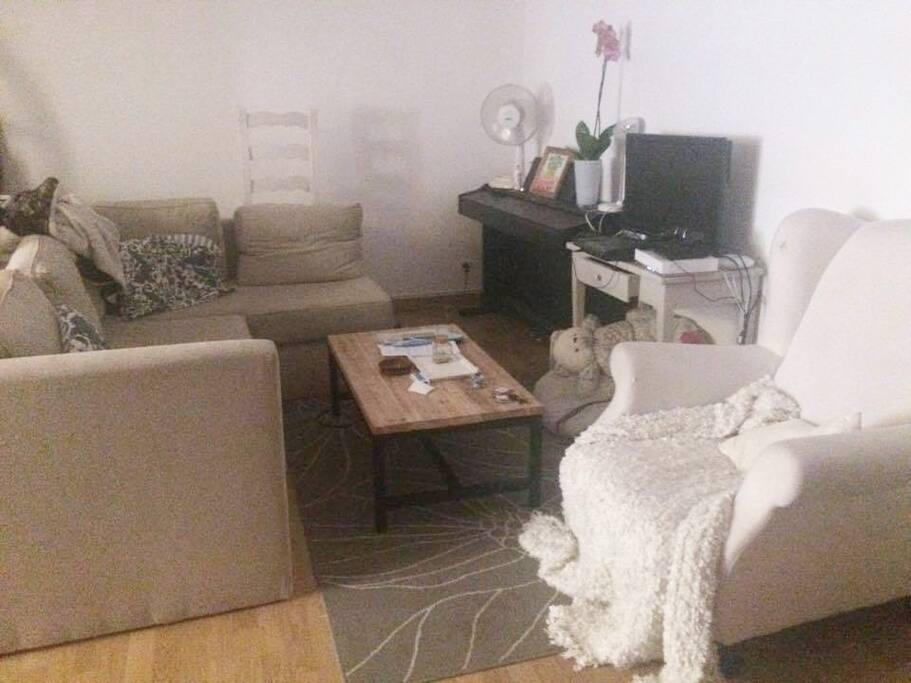 t3 meubl avec jardin et terasse apartments for rent in toulouse occitanie france. Black Bedroom Furniture Sets. Home Design Ideas