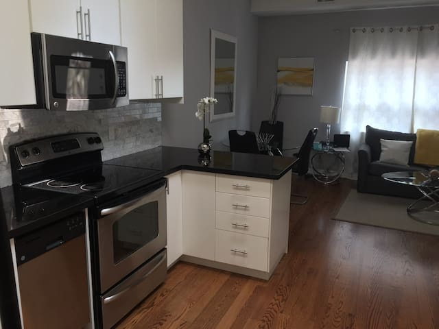 Gorgeous modern apartment on the danforth.