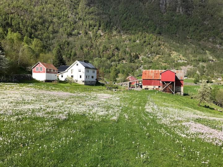 Volda, heim m utsikt i landlige omgivelser