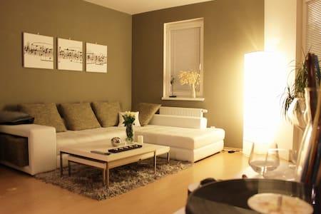 Dolda´s Liberec apartment - Liberec - Byt
