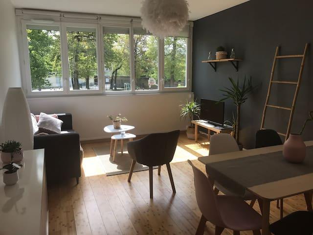 Agréable appartement à 15 min du centre Nantais
