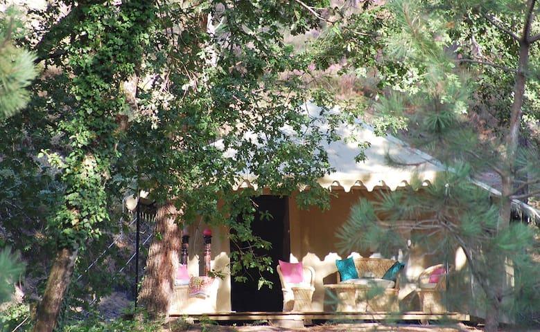 Palika Lodge, lodge Satya - Castets - Bed & Breakfast