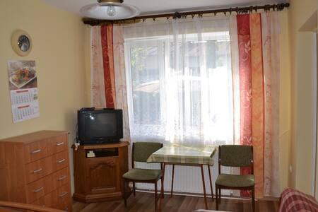 Apartament na parterze w centrum - Ciechocinek - 公寓