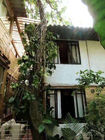 Casa da Girassol: casa de bambu e terra