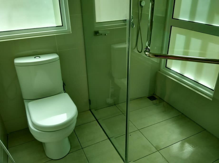Attached toilet and shower