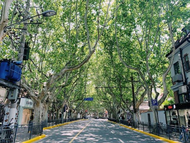 长乐路@FCC 老上海弄堂洋房 #比邻iapm@近地铁 感受有腔调的上海生活