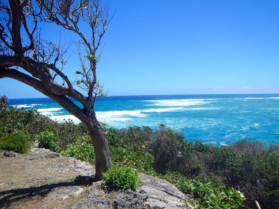 Best View In Barbados Faraway Cottage Cottages For