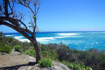 Best View In Barbados - Faraway Cottage - Bayfield