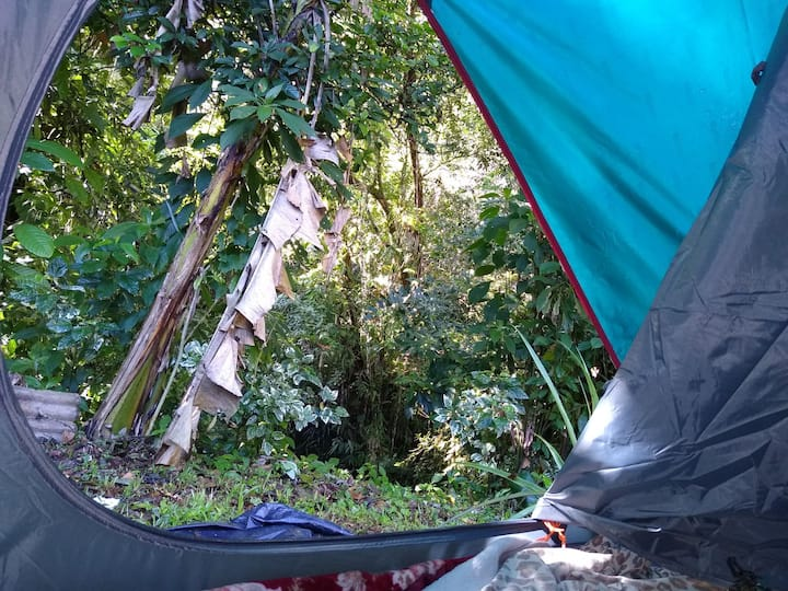 Camping Som de Cachoeira Prumirim (Do Mandioca)