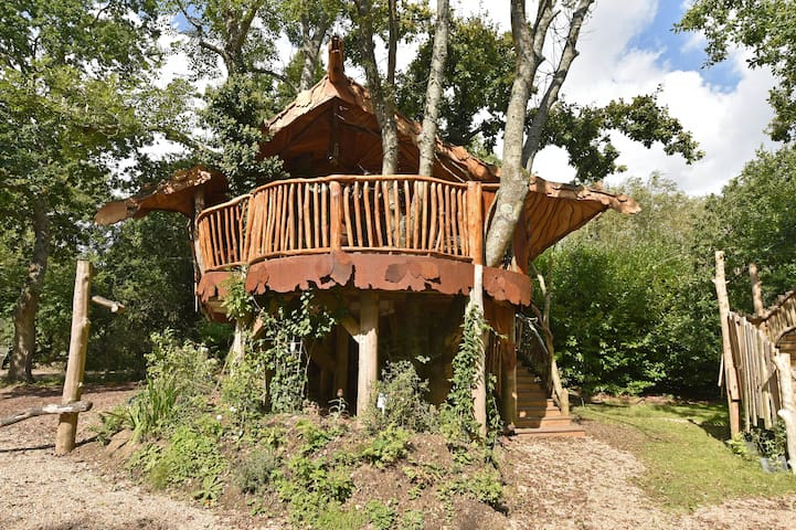 Piggledy Tree house at the foot of the South Downs
