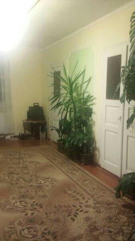 кімната в домі