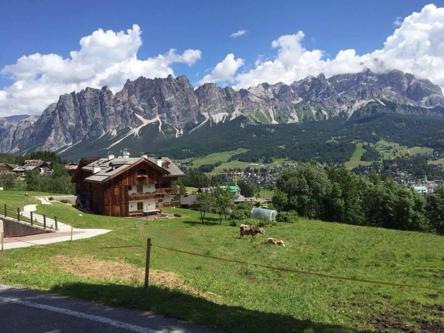 Vista panoramica (dalla casa) nella stagione estiva ⛰