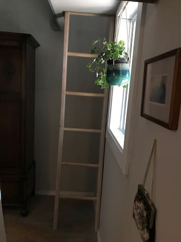 Narrow ladder up to loft space