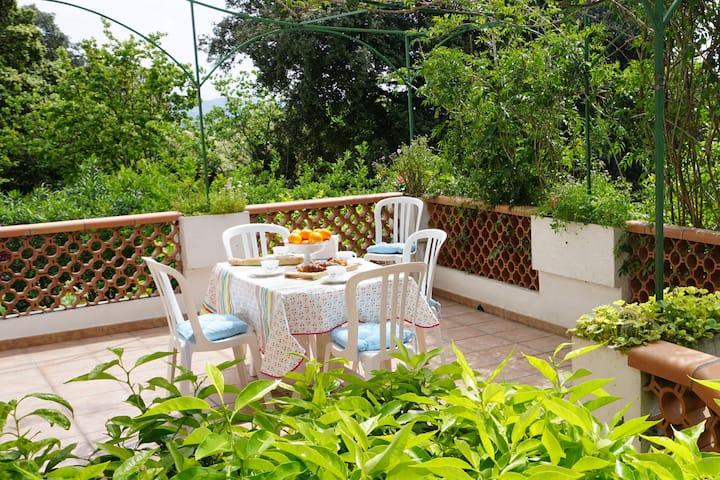 3 pièces neuf dans maison avec terrasse et jardin