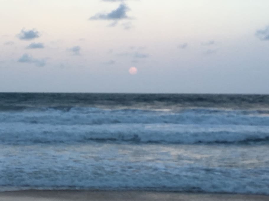 Moon rise on Dicky Beach