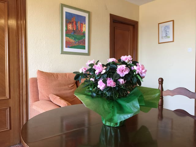 Nice, Quiet, Convenient - Granada - Apartament