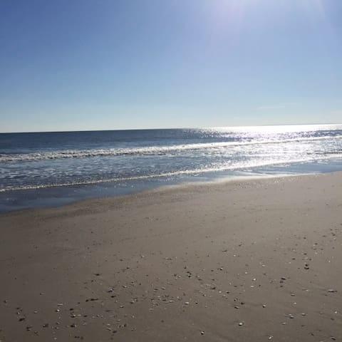 Basement Beach & Surf Bungalow - Квинс - Квартира