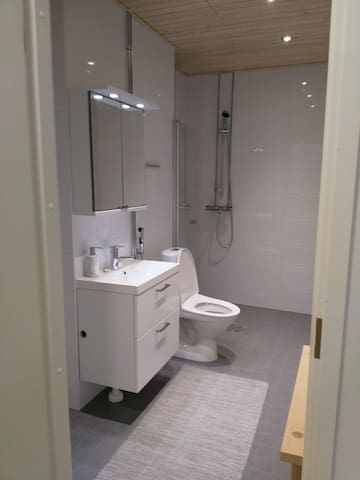 Modern and clean wc and shower
