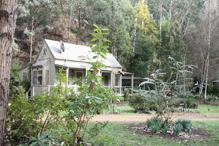 Shady Brook Alpine Cottages and garden no 3